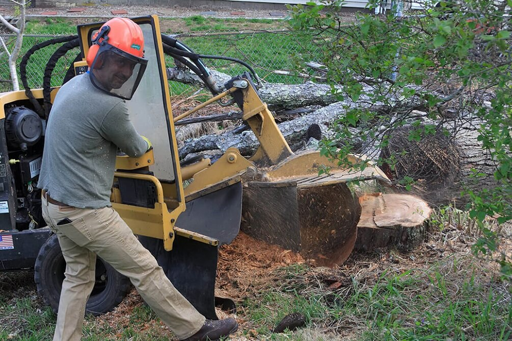 Contact Us-Savannah Tree Trimming and Stump Grinding Services-We Offer Tree Trimming Services, Tree Removal, Tree Pruning, Tree Cutting, Residential and Commercial Tree Trimming Services, Storm Damage, Emergency Tree Removal, Land Clearing, Tree Companies, Tree Care Service, Stump Grinding, and we're the Best Tree Trimming Company Near You Guaranteed!