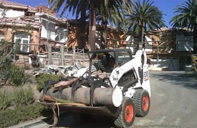 Palm-Tree-Removal-Savannah Tree Trimming and Stump Grinding Services-We Offer Tree Trimming Services, Tree Removal, Tree Pruning, Tree Cutting, Residential and Commercial Tree Trimming Services, Storm Damage, Emergency Tree Removal, Land Clearing, Tree Companies, Tree Care Service, Stump Grinding, and we're the Best Tree Trimming Company Near You Guaranteed!